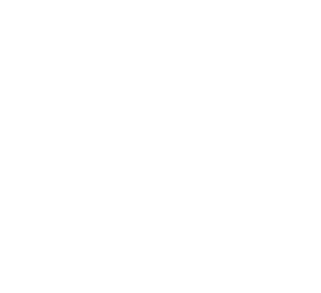 World Winter Cities Association for Mayors